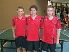 Herren Kreisklasse C-Pokal: TTC Widdern 1